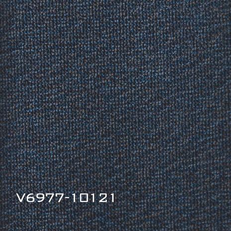 V6977-10121