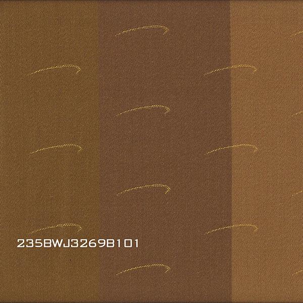 235BWJ3269B101