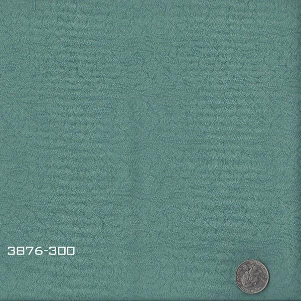 3876-300