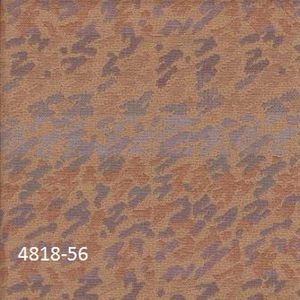 4818-56