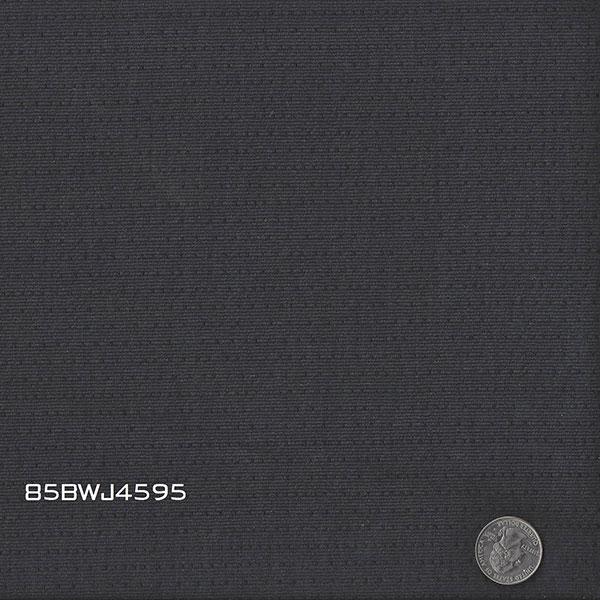 85BWJ4595