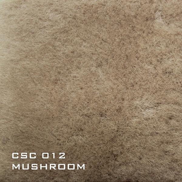 CSC012 Mushroom
